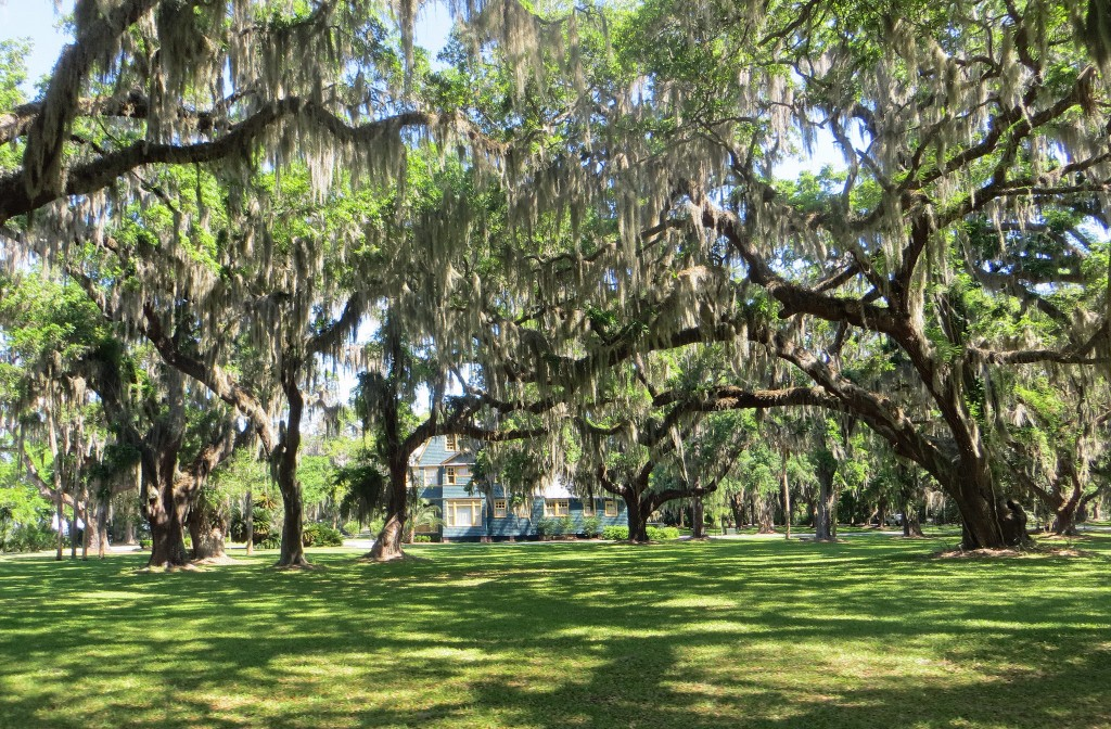 At the Jekyll Island Campground, you can enjoy the shade of the moss-draped Spanish Oaks that the island is known for.