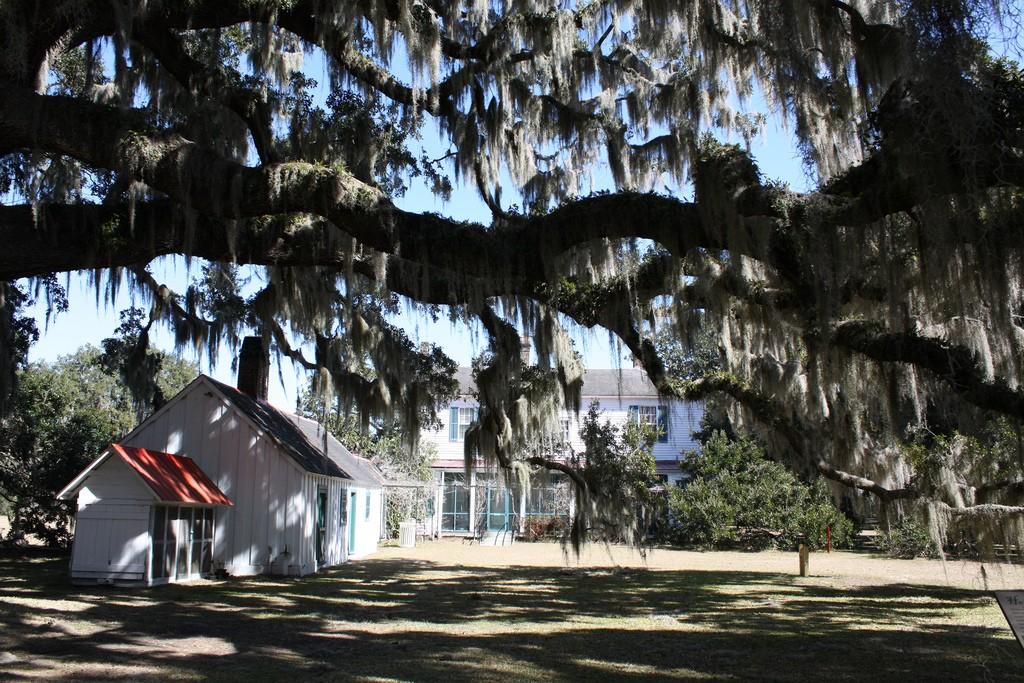 plantation glynn county