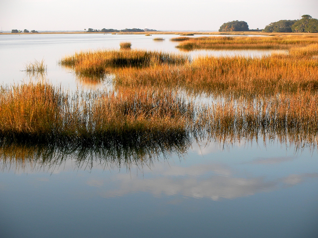 The Marshes St Simons Island